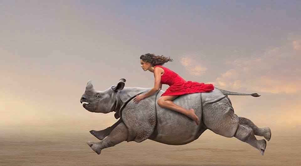 Natural Ketogenic Solutions Rhino with lady on top running.
