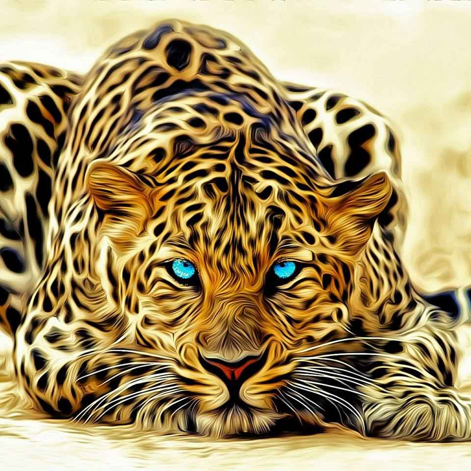 Natural ketogenics solutions Leopard picture